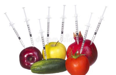 Genetically Modified Organisms. Can We Live Without Them?